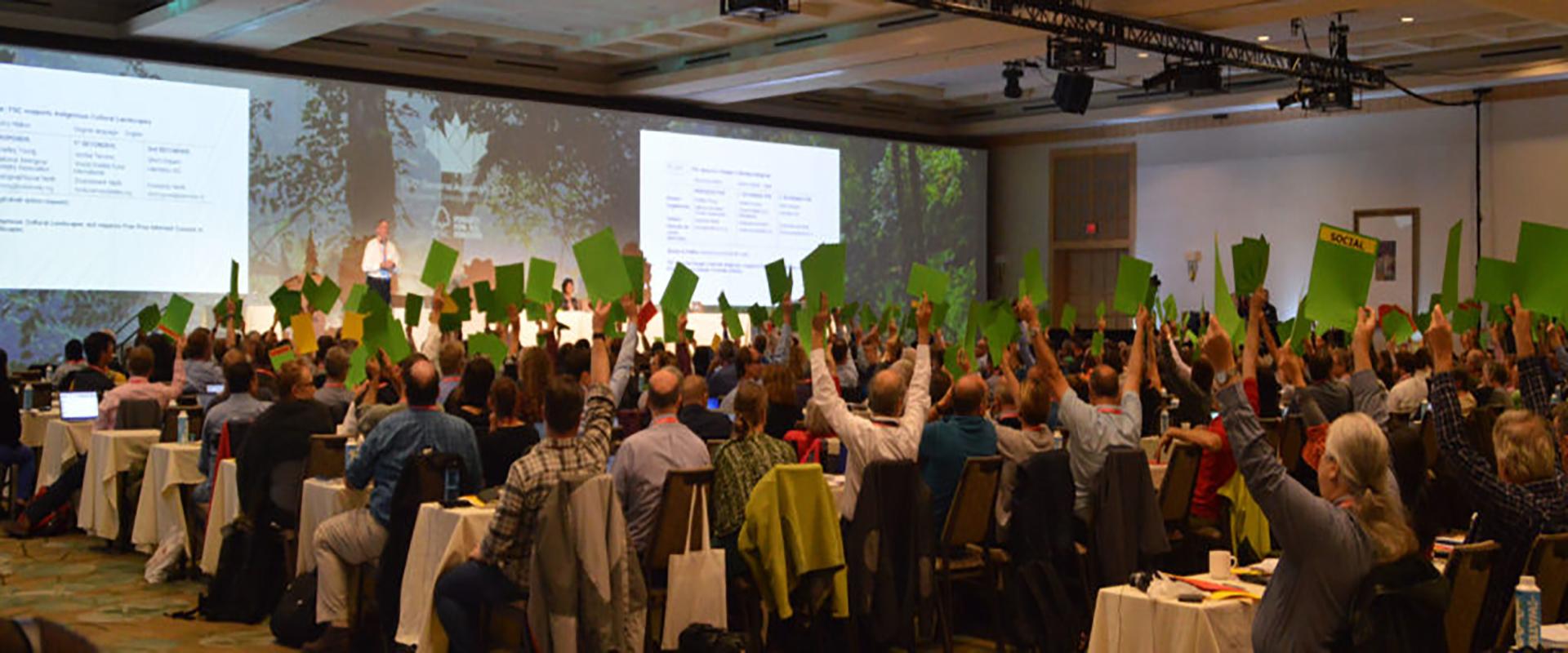 Nowa inicjatywa FSC - deklaracja z Vancouver.