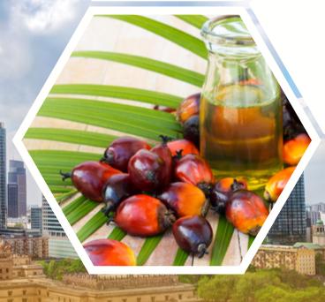 Wizyta Malezyjskiej Rady ds. Oleju Palmowego w Warszawie