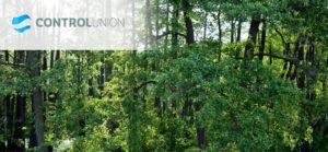 certyfikacja_branży_leśnej