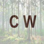 FSC opublikowało nową interpretację dla drewna kontrolowanego